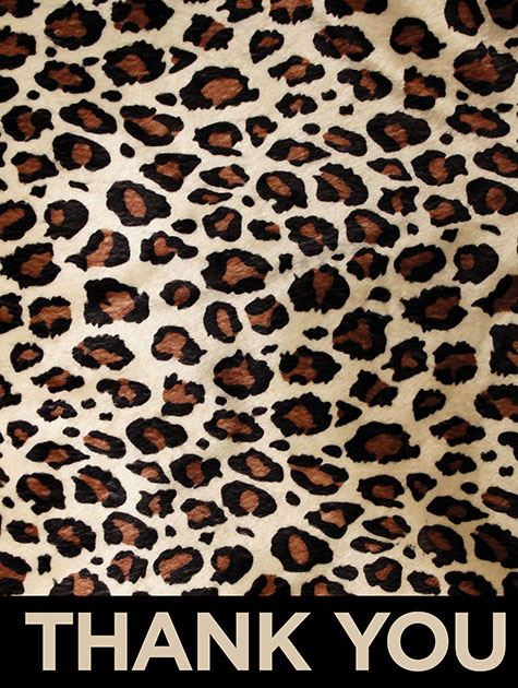 Picture of Bold Leopard Thanks