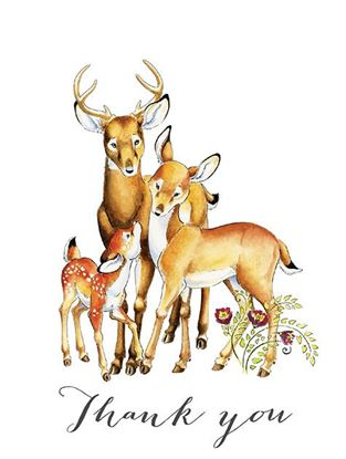 Picture of Deer Thank You