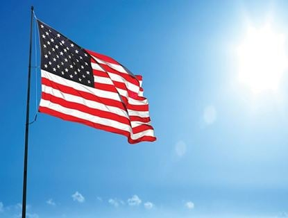 Picture of Flag Waving in the Sky