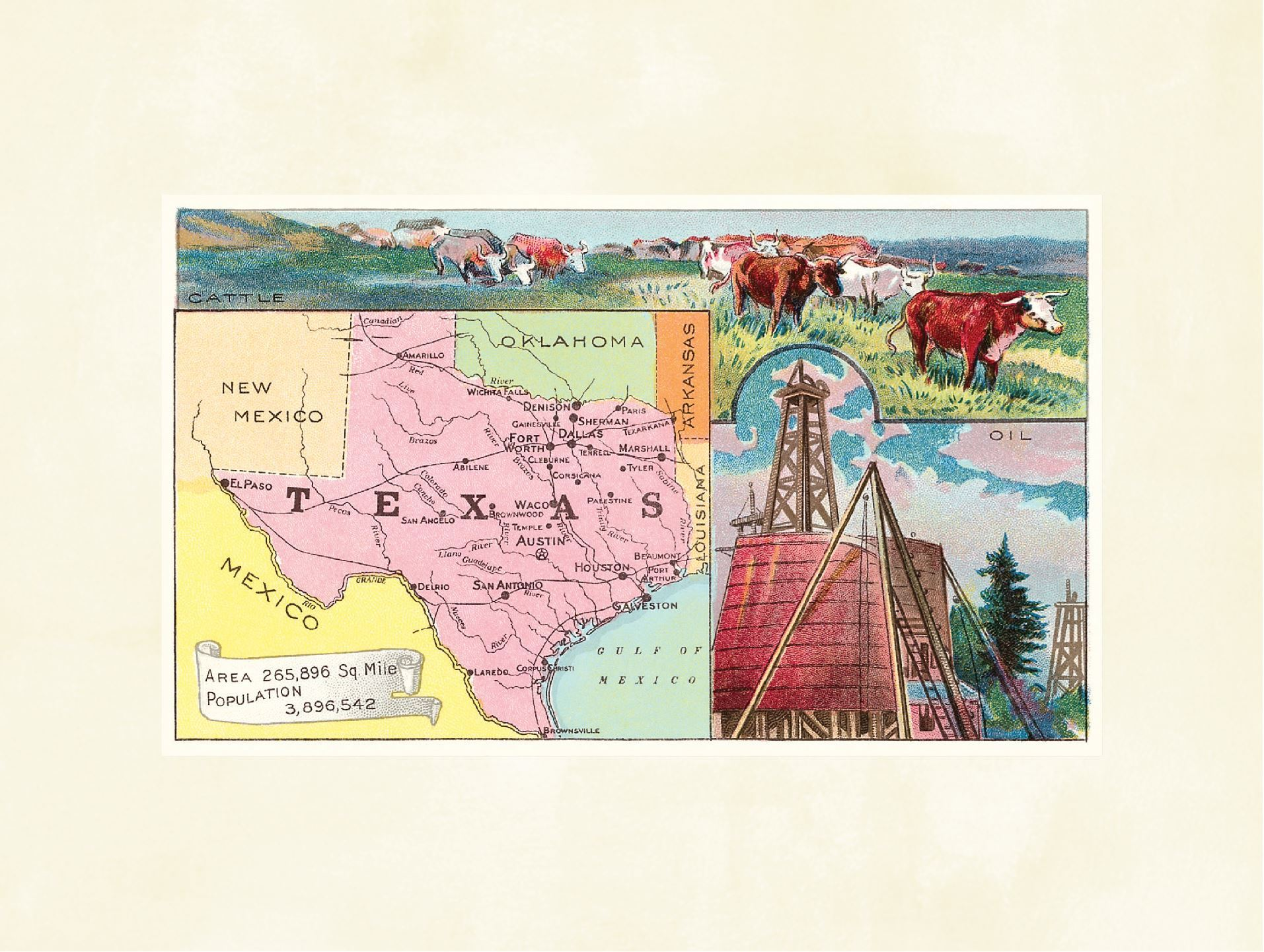 Texas Cattle and Oil